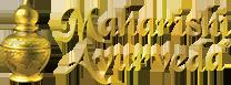 MAPI-header-logo